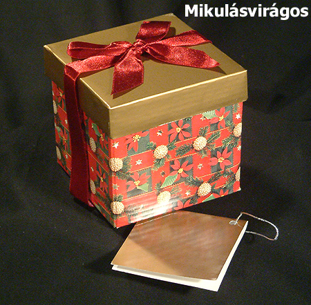 Karácsonyi ajándékdoboz - mikulásvirágos