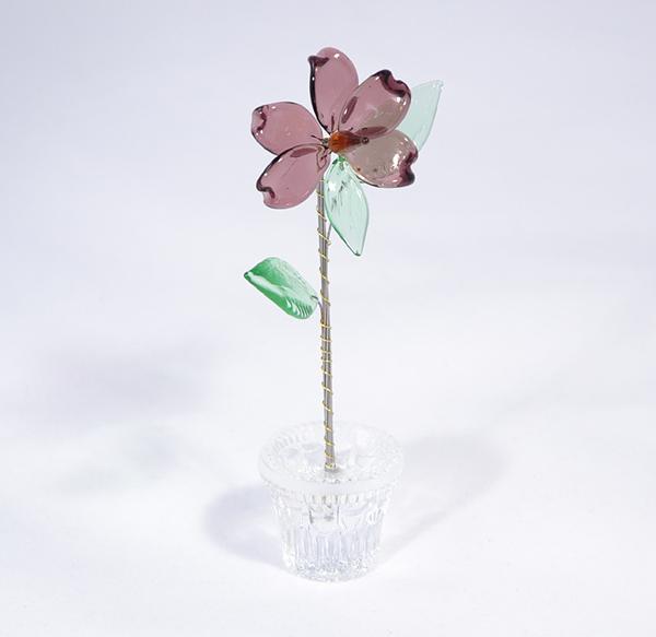 Mályva kicsi üvegvirág - lila