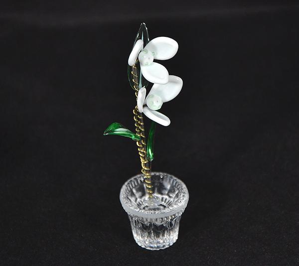 Hóvirág - kicsi üvegvirág